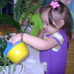 Экологическое воспитание в группе раннего возраста