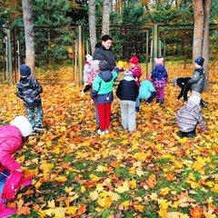 Детский сад круглый год
