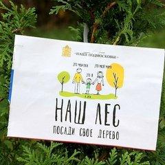 "Школьники стали участниками Акции ""Наш лес. Посади своё дерево"""